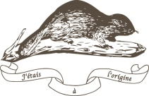 shg_logo